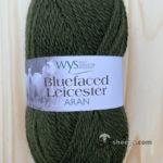100% Bluefaced Leicester Aran – Avocado 350