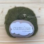 Cumulus Moss